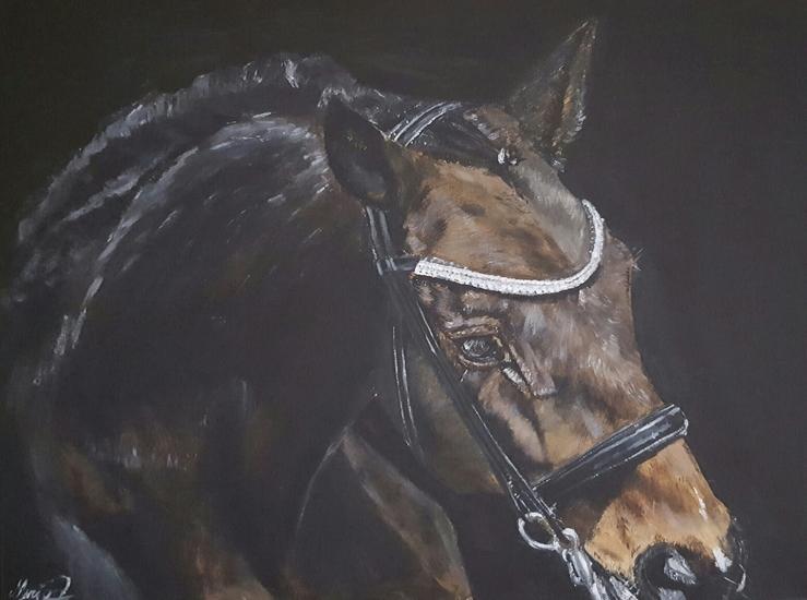 Miriam Nijboer - Prachtige paard Ammie
